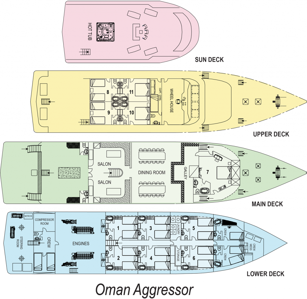 Croisière plongée à Oman à bord de l'Oman Aggressor