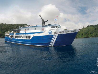 Croisière plongée à Cocos Island à bord du Okeanos Aggressor II