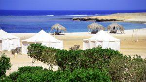 Ecolodges Marsa Shagra en Egypte - Marsa Nakari et Wadi Lahami