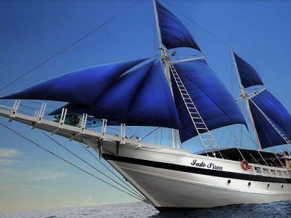 Croisière plongée avec Dive-Shop.ch en Indonésie à bord du Indo Siren