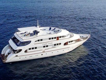 Carpe Diem croisière plongée aux Maldives - Un bateau très apprécié. 10 cabines sont réparties sur 3 ponts et peuvent accueillir 20 plongeurs.